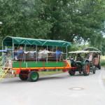 6traktorentreffen-2012320